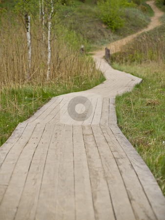 Path stock photo, Wooden path in the green grass and nature by Sergej Razvodovskij