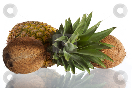 Pineapple stock photo, Pineapple and coconuts on a white background. by Sergey Goruppa