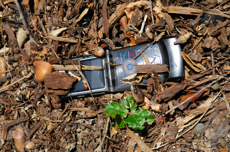 Dropped Cell Phone stock photo, Cellular telephone that was lost and partially buried under  woodland debris by Lynn Bendickson
