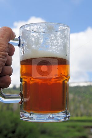Mug Of Ale stock photo, Partially consumed mug of ice cold  micro brewery Ale by Lynn Bendickson