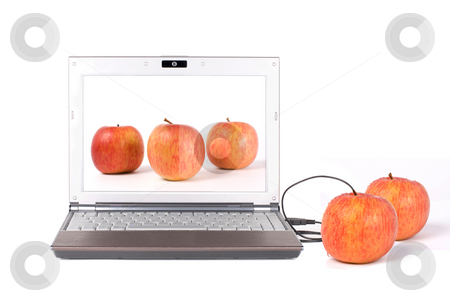 Download real apple stock photo, Download real apple from the laptop by USB, From desktop to tabletop. by Lawren
