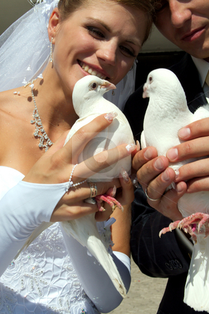Wedding stock photo, Day of wedding the most solemn and unforgettable in a life of each person by Sergey Goruppa