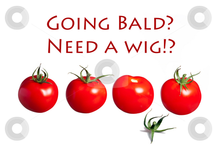 Going bald need a wig? stock photo, A series of red tomatos one lost its hair by Dirk Ercken