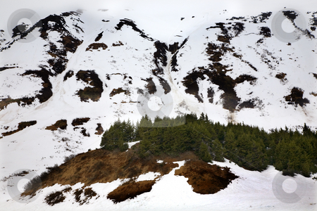 Snow Mountains Brown Seward Highway Anchorage Alaska stock photo, Snow Mountains Brown Earth and Green Trees, Seward Highway, Anchorage, Alaska by William Perry