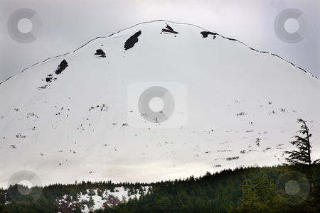 Snow Mountain Outline Green Tree Anchorage Alaska stock photo, White Snow Mountain Green Tree Outlined against Sky, Seward Highway, Anchorage, Alaska by William Perry