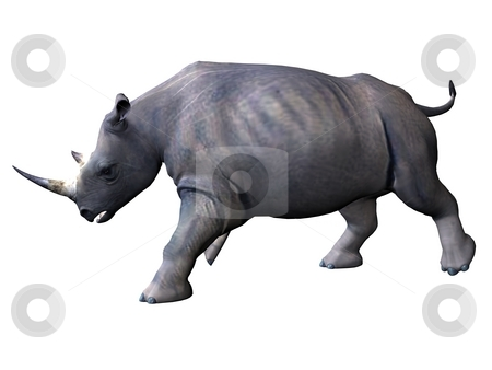 Side-view on chaarging rhinoceros stock photo, 3D rendered model of african rhinoceros on white background isolated by Patrik Ruzic
