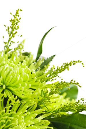 Flower arrangement stock photo, Close up of floral arrangement with green chrysanthemums by Elena Elisseeva