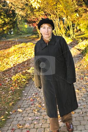 Senior woman in fall park stock photo, Senior woman walking alone in fall park by Elena Elisseeva
