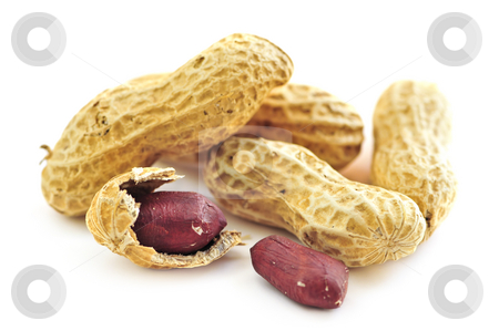 Peanuts and shells stock photo, Closeup of peanuts with and without shells by Elena Elisseeva