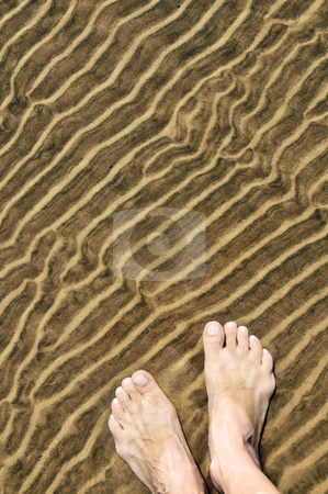 Feet in shallow water stock photo, Bare feet wading in clear shallow water at sandy beach by Elena Elisseeva