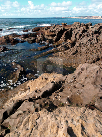 Coastal coral formations stock photo, View down the pacific coast of coral formations by Jill Reid