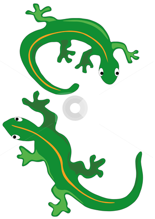 Two Lizards stock vector clipart, Vector Illustration of two green lizards with yellow stripes. by Robert Gebbie