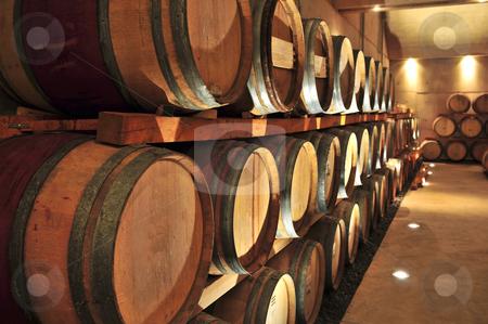 Wine barrels stock photo, Stacked oak wine barrels in winery cellar by Elena Elisseeva