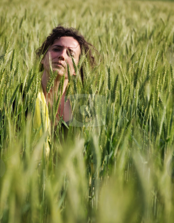 Woman in barley field stock photo, Photo of an attractive french woman hidding in a green barley field by Laurent Dambies