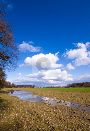 Farmland after the rain stock photo, Farmland after the rain with puddle and blue sky and some clouds by Karin Claus