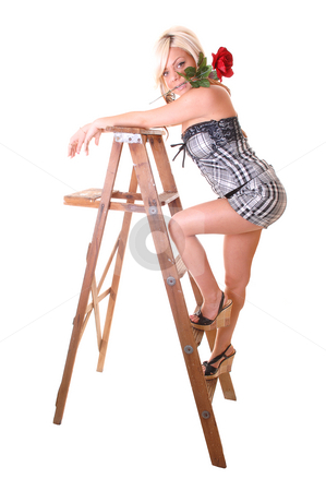 Girl on stepladder. stock photo, Pretty young girl in a black and white shorts and top with long blond hair  standing on the wooden stepladder, holding an red rose in her mouth. by Horst Petzold
