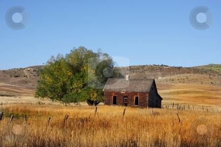 Americana stock photo, Deserted Farm with wheat grassand blue skys by Mark Smith
