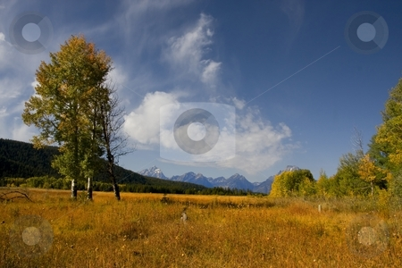 Grand Tetons stock photo, View of Mt Moran in Grand Teton National Park by Mark Smith