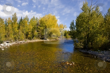 Grand Tetons stock photo, Fall Colors on the Snake River Grand teton National Park by Mark Smith