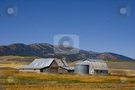 Americana stock photo, Old barns in a hay field with fall colors by Mark Smith