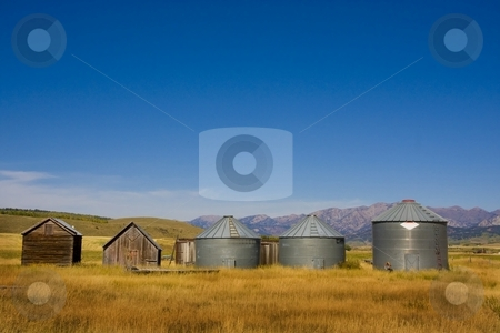 Americana stock photo, Barns in a field of wheat with blue sky by Mark Smith