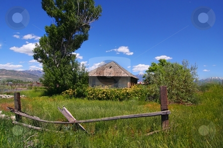 Americana Farm stock photo, Old farm with wild roses and a wood fense by Mark Smith