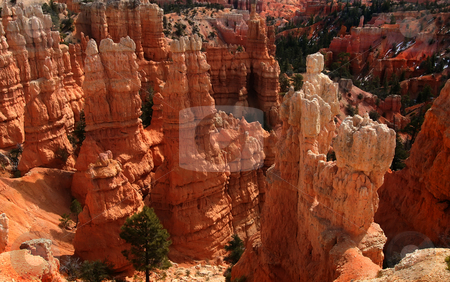 Bryce Canyon National park stock photo, View of the red rock formations in Bryce Canyon National Park by Mark Smith