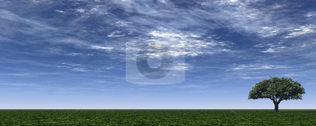 Banner stock photo, Lonely tree on green field - 3d illustration by J?