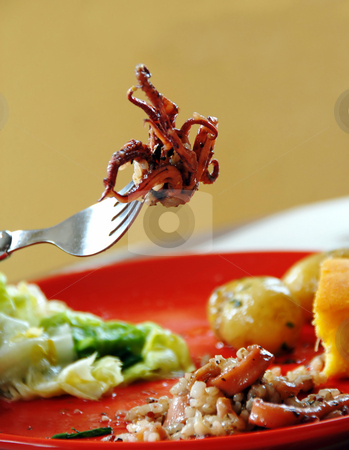 Risotto with squids stock photo, Squids rice with vegetables on red plate, piece on fork by Julija Sapic