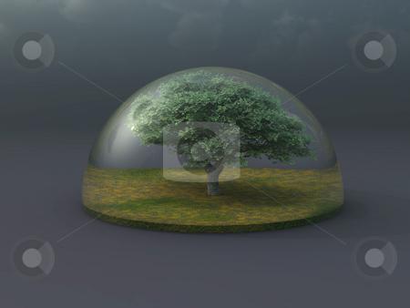 Prtotect stock photo, Tree under a glass dome - 3d illustration by J?