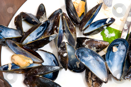 Mussels stock photo, A dish of mussels with shells and cutlery by Corepics VOF