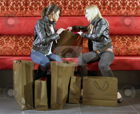 Happy Shoppers stock photo, Two shoppers, going over their purchases by Corepics VOF