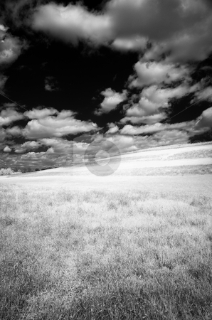 Open Field stock photo, Open field shot in infrared at Stroud Nature Preserve. by Eric Lukavsky