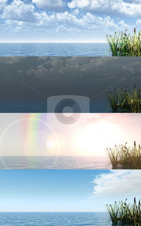 Reed stock photo, Reed at water - 4 versions - 3d illustration by J?