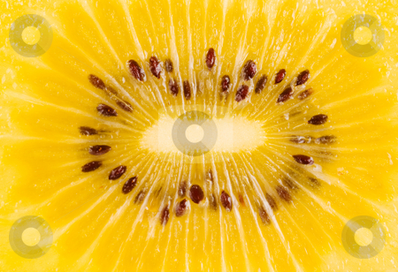 Golden kiwi fruit stock photo, Inside of golden kiwi fruit by Lawren