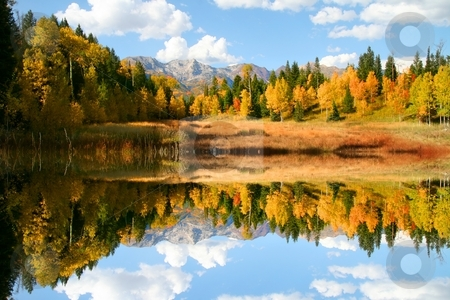 Fall Refelctions stock photo, Fall colors on a high mountain meadow with blue sky and clouds by Mark Smith