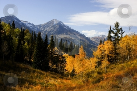 Autumn Splender stock photo, High Mountain Flat in the fall showing all the fall colors with mountains in the background by Mark Smith