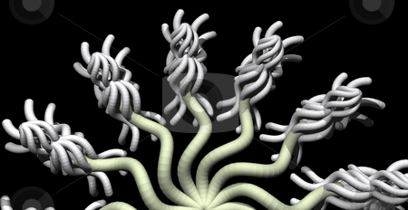 Alien plant stock photo, Abstract organic form on black background - 3d illustration by J?