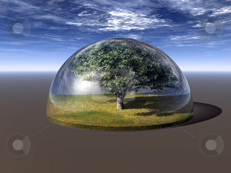 Tree stock photo, Tree under a glass dome - 3d illustration by J?