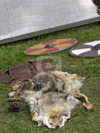 Wolf fell stock photo, Wolf fell and shields on the green grass by Sergej Razvodovskij