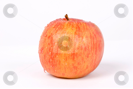 Fresh apple with water drops stock photo, Isolated fresh apple with water drops by Lawren