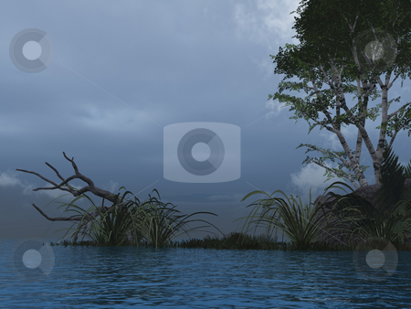 Evening stock photo, Water landscape with tree  - 3d illustration by J?