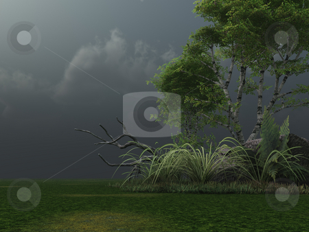 Stormy clouds stock photo, Birch and stormy clouds - 3d illustration by J?