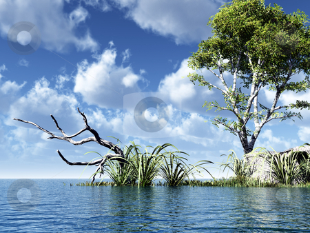 Birch stock photo, Water landscape with tree  - 3d illustration by J?