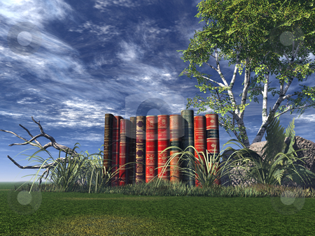 Literature stock photo, Old books on a green field by J?
