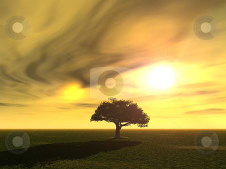 Tree stock photo, Tree at a surreal landscape - 3d illustration by J?