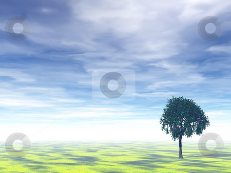 Tree stock photo, Lonely tree on a field and cloudy background - 3d illustration by J?