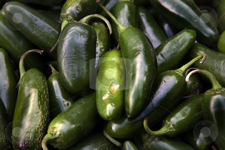 Green Jalapeno Chili Peppers stock photo, Spicy Green Jalapeno Chili Peppers Habanera Capsicum Annum by William Perry