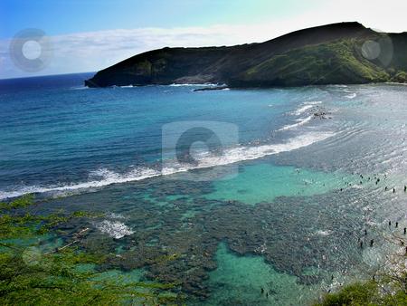 Hanamu Bay, Oahu, Hawaii stock photo, Hanamu Bay, Oahu, Hawaii  Snorkeling in Hanamu Bay by William Perry