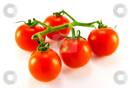 Tomatoes on The Vine stock photo, Cherry tomatoes on the vine with clipping path on a white background by Keith Wilson